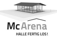 mc arena